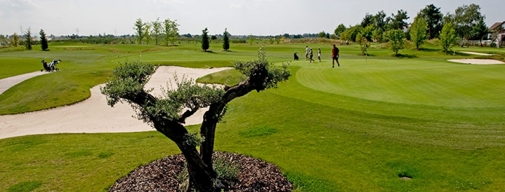 Golfpark Bachgrund - Golf Absolute